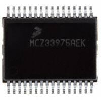 MCZ33905BS5EK|飞思卡尔单片机